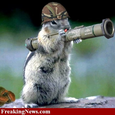 Fierce squirrel with rocket launcher