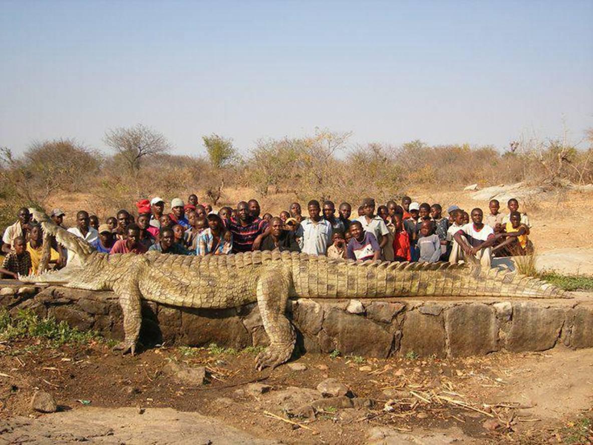 Фото африканских толстушек 10 фотография
